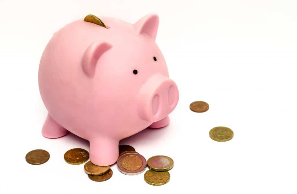 business money pink coins 1024x670 1024x670 - Tips on money management for your Overland business